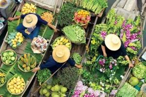 Mekong Delta Understanding